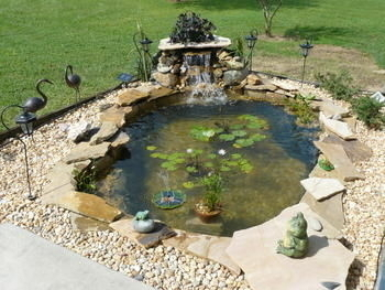 Cindi 39 s koi pond waterfall fl gallery for Garden pond supplies