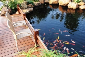 Koi Pond Kit Systems by Easy Pro Pond Products
