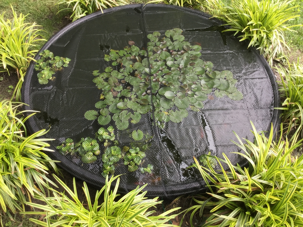 Pond netting fish tank covers for Fish pond nets