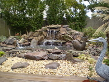 Lionheart landscaping waterfall and pond pond pictures for Ultimate koi clay