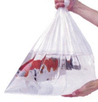 Fish Bags (Bulk) | Fish Bags