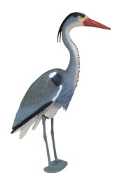 Blue Heron Decoy | Heron Decoys