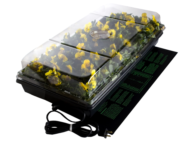 Germination Station with Heat Mat, Tray | Hydroponics