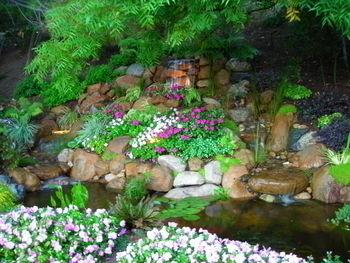 Image Miller's Pond 2