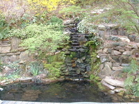 Michael and Devin's Waterfalland Koi Pond thumbnail