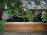 Deck Pond thumbnail