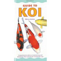 Interpet guide to koi discontinued products for Ultimate koi clay