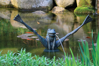 Image Crazy Legs Frog Spitter by Aquascape