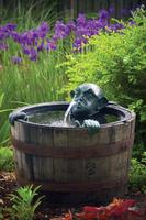 Image Man in Barrel Spitter w/Pump