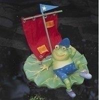 Image Sailing Frog Floater