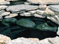Image Floating Alligator