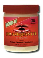 Image Praziquantel by Microbe-Lift