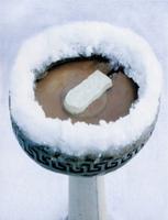 Image Ice Eliminator Birdbath De-Icer
