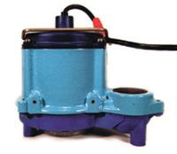 Image Little Giant Cast Iron Pumps