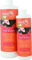Image Nitrifying Pond Bacteria by Pond Force