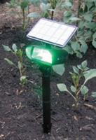 Image Solar Spotlight/Green