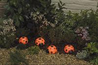 Image Ladybug Solar Light Set -4-pack