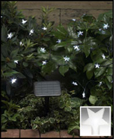 Image Solar Star Light String-50 white LEDs