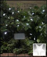 Image Solar Star Light String-50 white LEDs