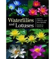 Image Waterlilies and Lotuses: Species, Cultivars, and New Hybrids by Perry D. Slocum