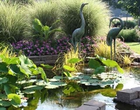 Image Pond Decor