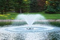 Image Airmax EcoSeries Fountain - 1/2 HP