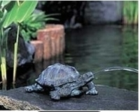 Image Turtle Spitter