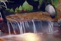 Image BCP014 - Decorative Overflow Stone 24