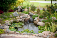 Image DIY Backyard Pond Kits - 4x6, 6x8, 8x11