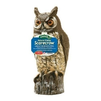 Image Great Horned Owl Decoy