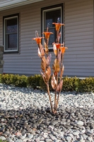 Image Orange Trumpet Fountain Kit