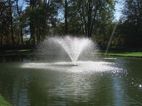 Image Nozzles for Easy Pro Floating Fountain Head