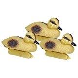 Image Yellow Duckling