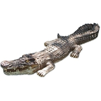 Image Crocodile Body Float