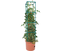 Image Heavy Duty Tomato Barrel w/Tower