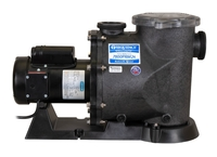 Image Sequence Primer Alpha Pumps