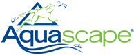 Image Aquascape