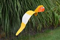 Image Dancing Birds - Parrots