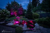 Color Changing Lights image