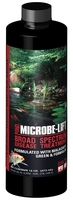 Image Broad Spectrum Disease Treatment by Microbe-Lift