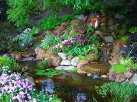 Miller's Pond thumbnail