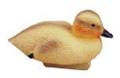 Image Duckling Decoy