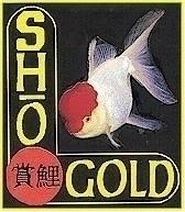 Image Sho Koi Gold - Sinking